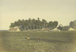 Village near Point de Galle.